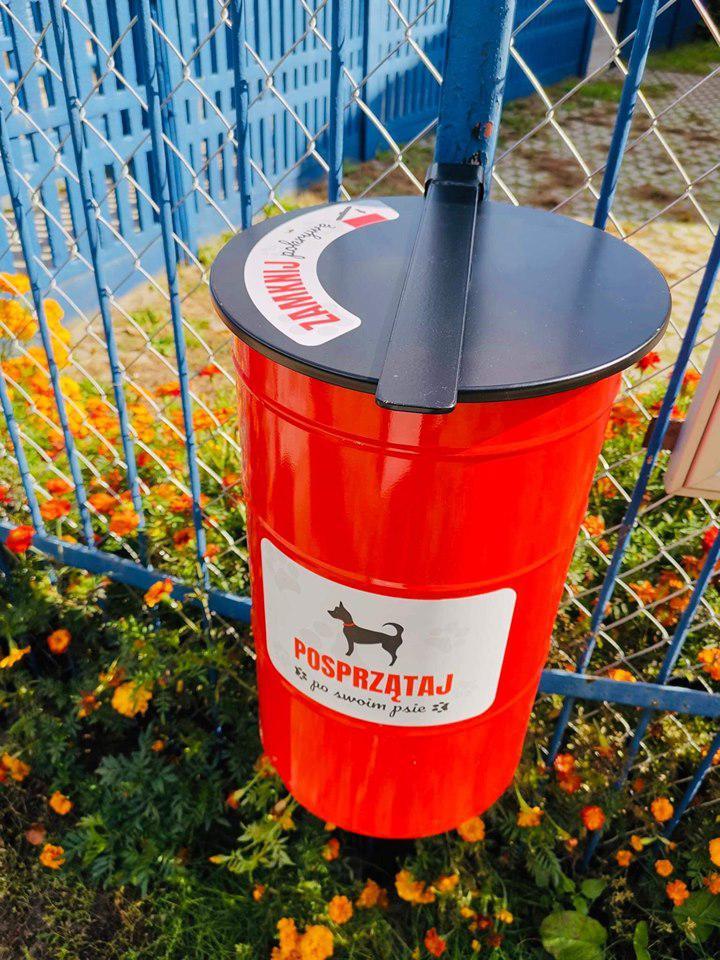 Celestyniaki - Schronisko dla Bezdomnych Zwierząt w Celestynowie